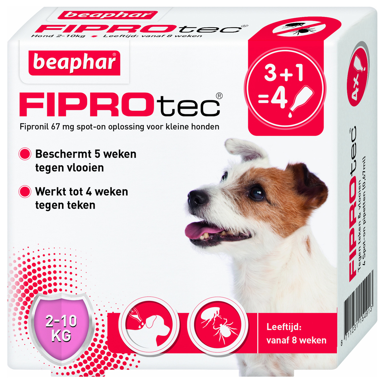 Beaphar Fiprotec Dog 3+1 pip - Anti vlooien en tekenmiddel - 2-10kg