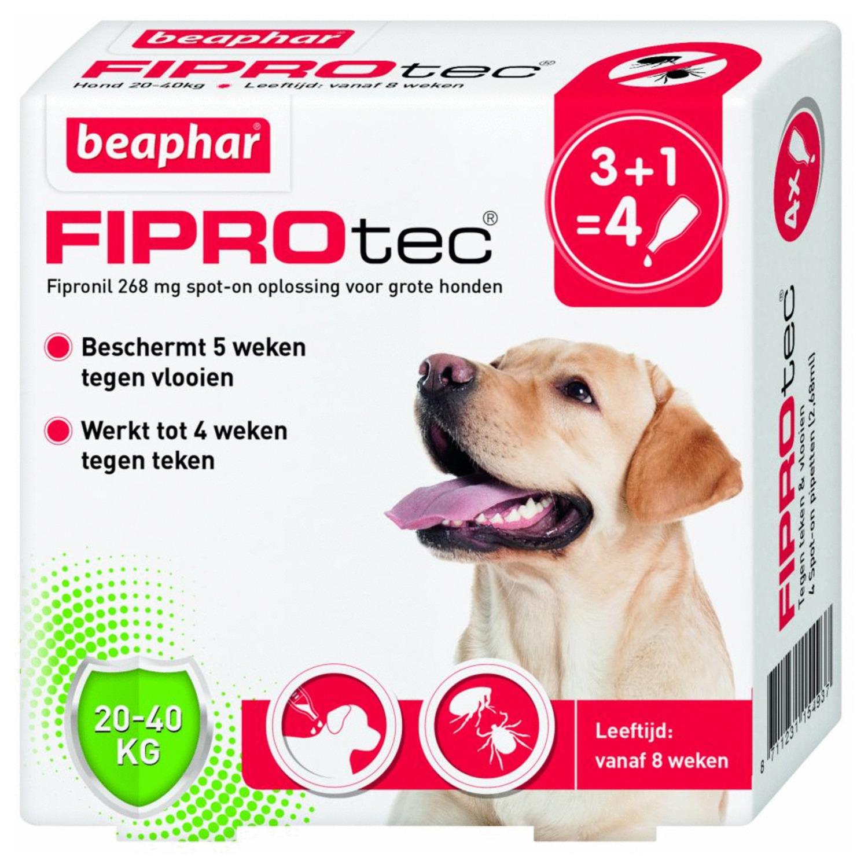 Beaphar Fiprotec Dog 3+1 pip - Anti vlooien en tekenmiddel - 20-40kg Vanaf 12 Maanden