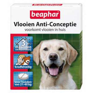 Beaphar Vlooien Anti-Conceptie (21 tot 40 kg) hond 3 stuks