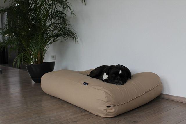 Hondenkussen beige katoen superlarge