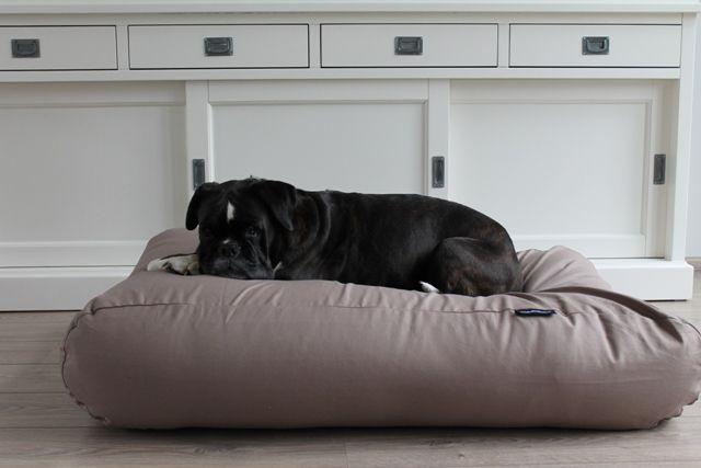 Hondenkussen taupe katoen large