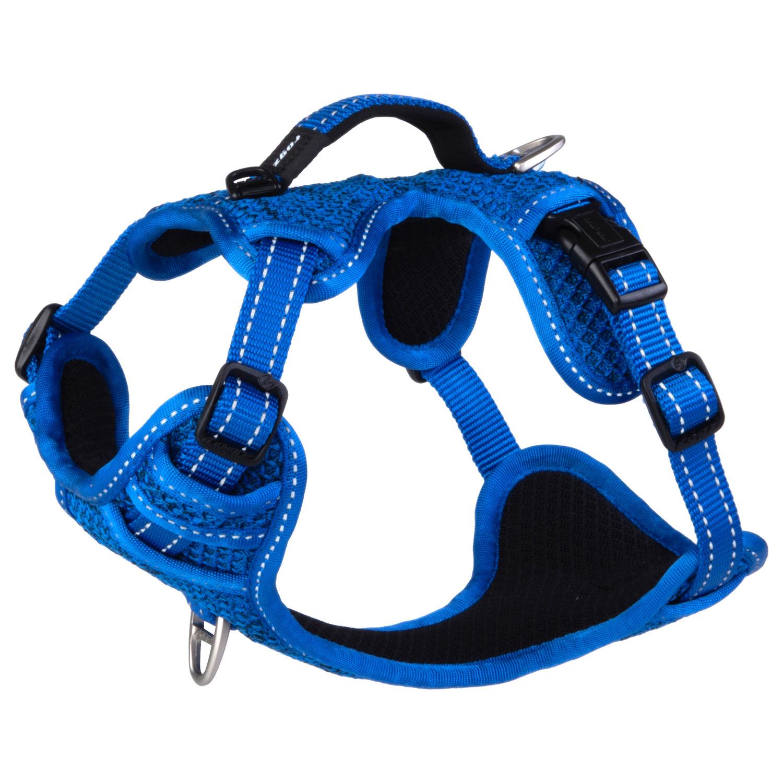 Rogz Explore Tuig Gevoerd Blauw - Hondenharnas - 37-48 cm