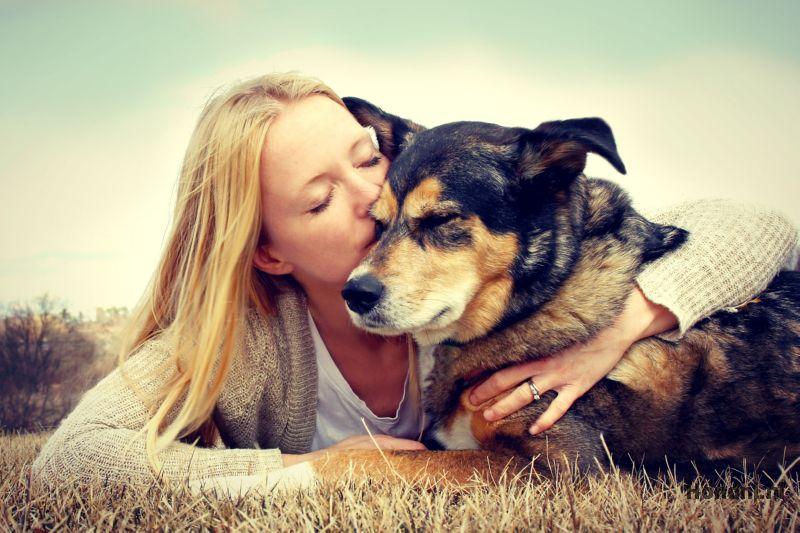 Knuffel met hond